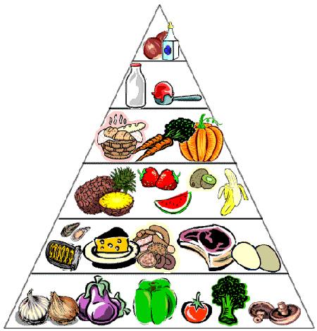 Những lưu ý khi giảm cân với chế độ ăn Low-Carb tại nhà2