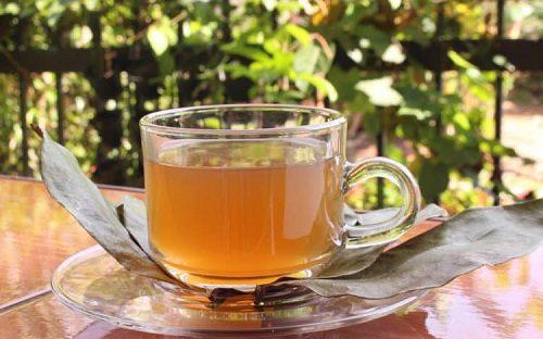 trà mãng cầu giảm cân