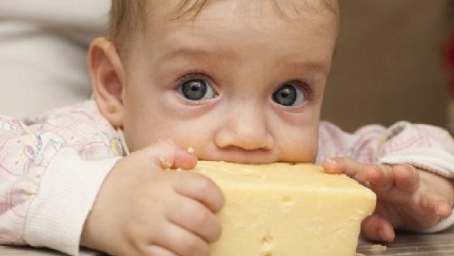 trẻ ăn phô mai
